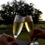 Texas Wine Country Fall 2016 – Part 2