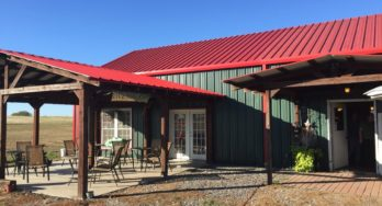 Lenoir-Sage Vineyards Revisited