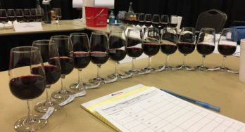 Texas Winery Gold Medals at Recent International Wine Competitions