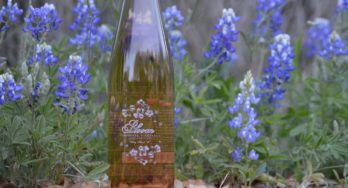 "Review of Farmhouse Vineyards ""Bloom"" Dry Rosé 2016"