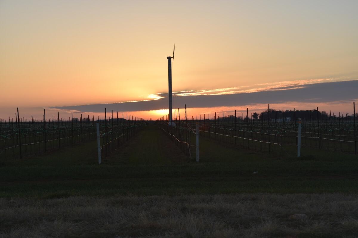 Wind Turbine at Sunrise