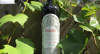 DAOU bottle among grapes