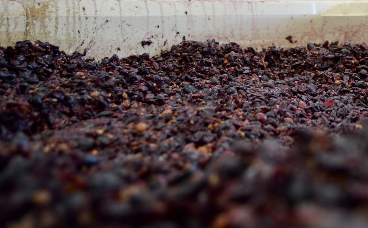 Ron Yates fermentation of red grapes