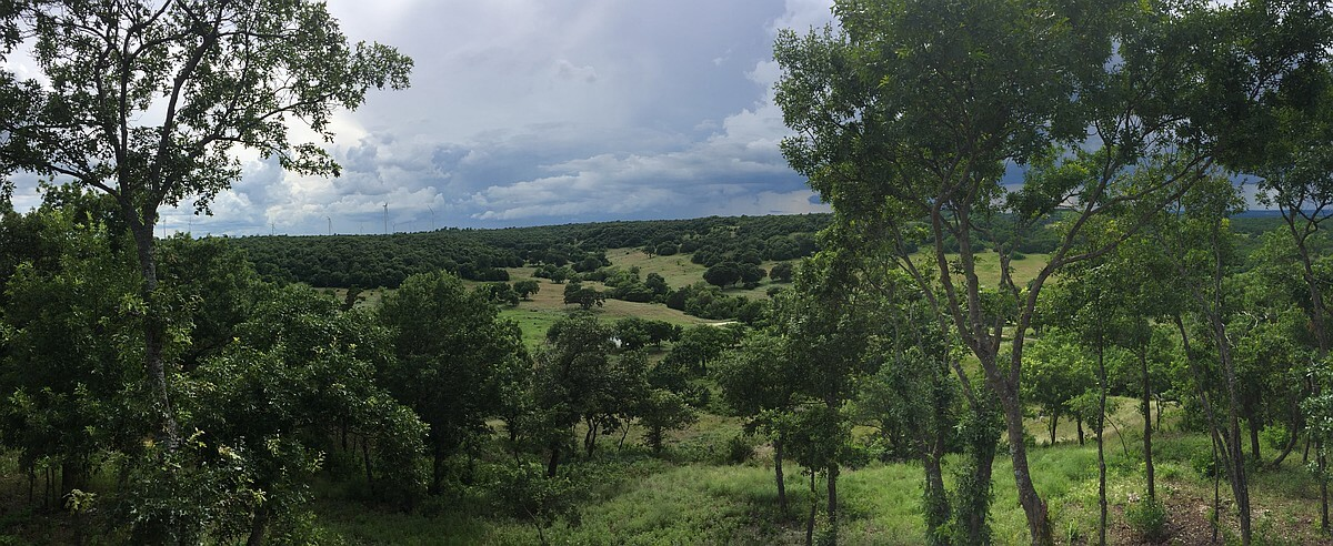 4R Ranch view