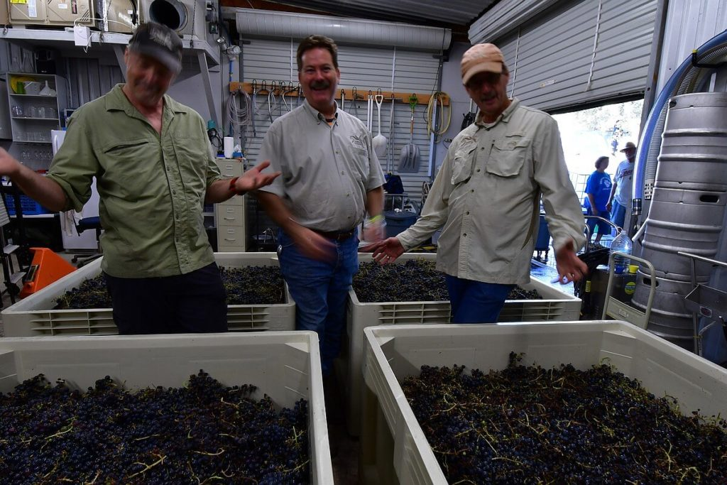 Tom Reed, Chip Concklin, and Doug Reed happy to call the 2017 Estate Harvest complete at Hawk's Shadow Winery