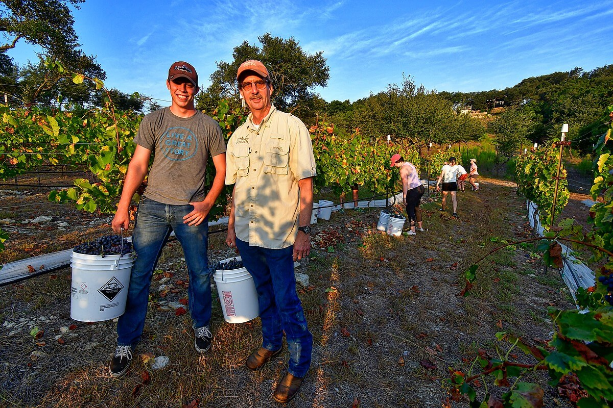 Doug and Sam hauling in the harvest from the picking team at Hawk's Shadow
