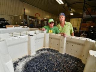 Bill Blackmon and Chris Brundrett, owners of William Chris Vineyards