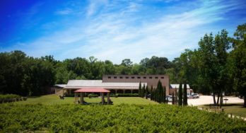 Los Pinos Ranch Vineyards Wins Multiple Wine Competition Awards