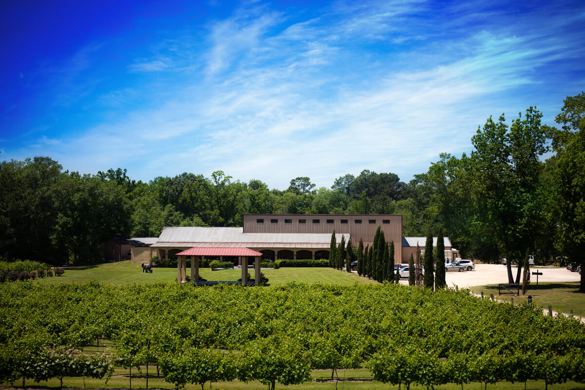 Los Pinos Ranch Vineyards estate