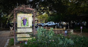 Music and Wine: Visiting The Grapevine in Gruene