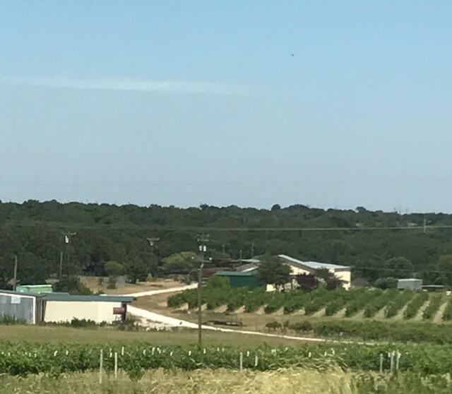 Umbra Winery at La Buena Vida Vineyards overview