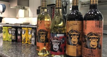 Infinite Monkey Theorem's wines