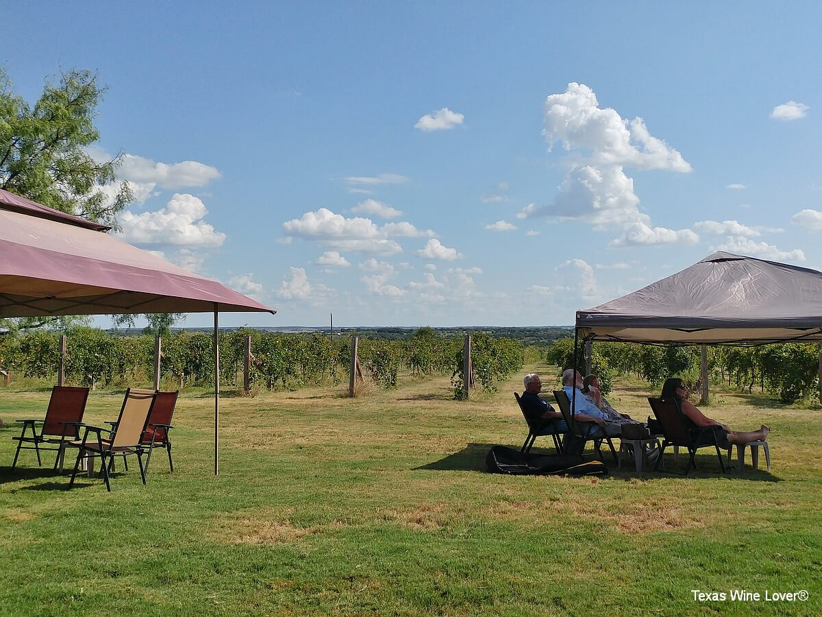 Red Wing Dove vineyard and people