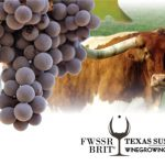 2020 Fort Worth Stock Show & Rodeo / BRIT Texas Sustainable Winegrowing Competition Winners