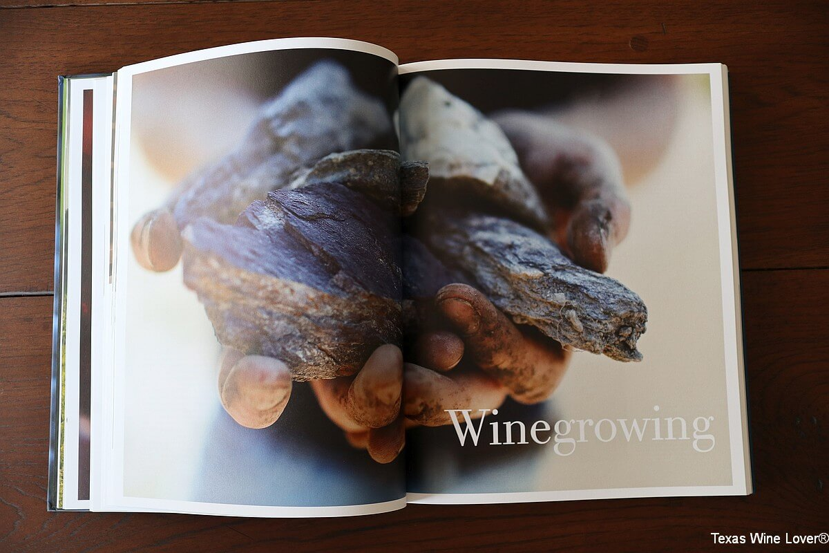 Winegrowing pages from Wine from Grape to Glass