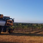2020 Harvest Update from Texas Fine Wine