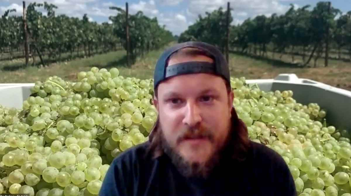 Mike Nelson - Upcoming Varietals #3